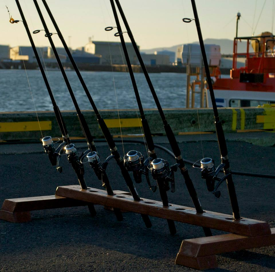 rent a rod fishing in the reykjav k harbour